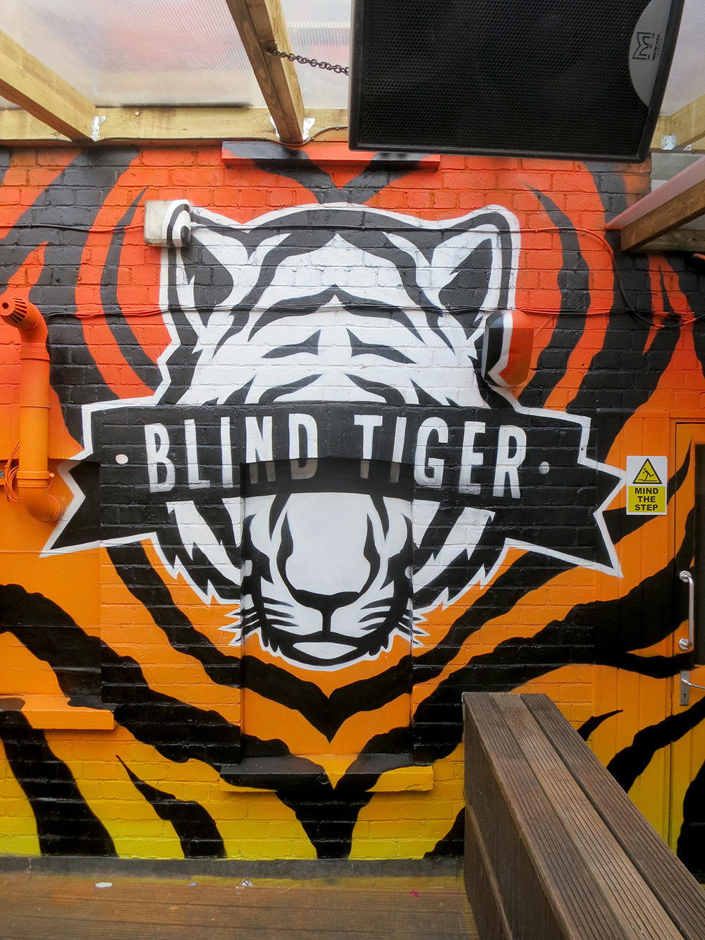 blindtiger-graffiti-art-mural-newport-cardiff
