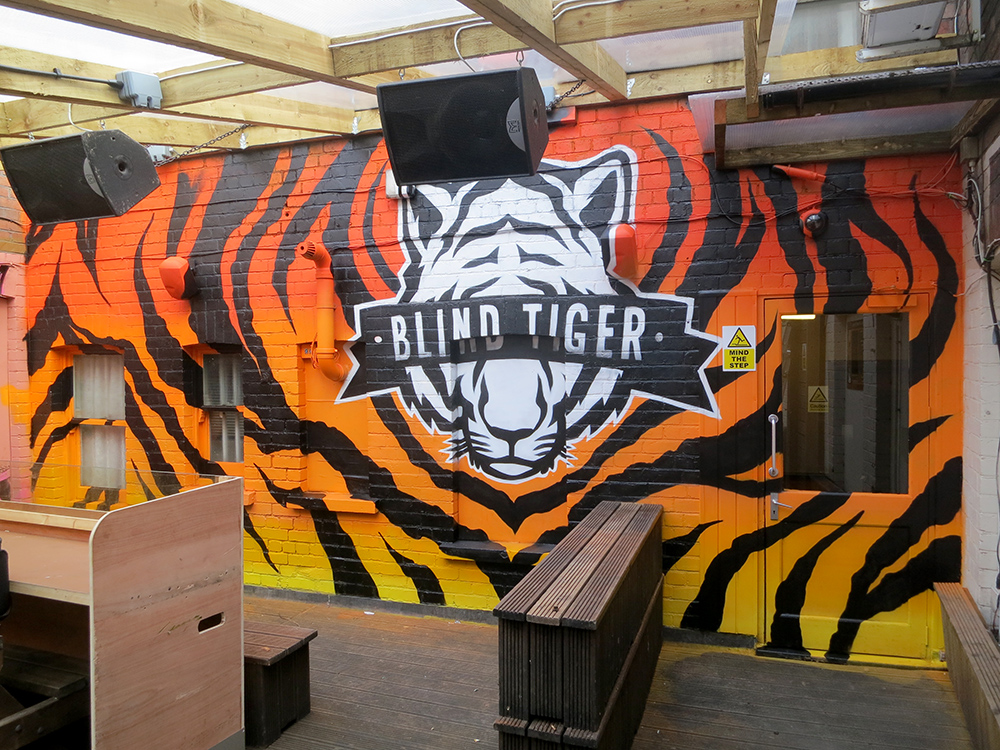 blindtiger-graffiti-art-mural-newport-cardiff-2
